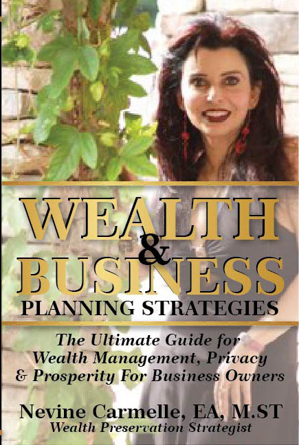 Wealth & Business by Nevine Carmelle